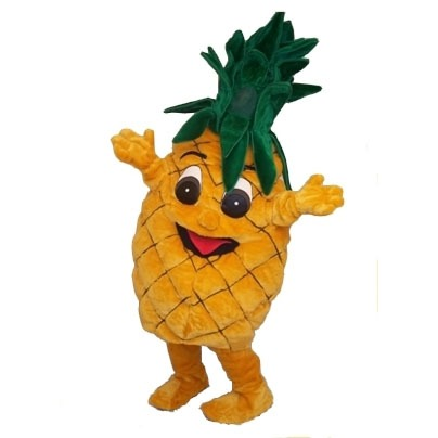 Complete ananas mascotte