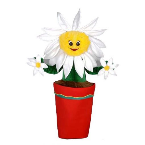 Complete bloem mascotte in pot